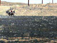 scorched prairie Michael SchumacherAP