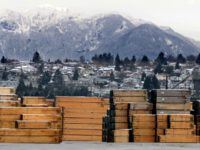 Donald Trump Announces 20 Percent Import Tax on Canadian Softwood Lumber