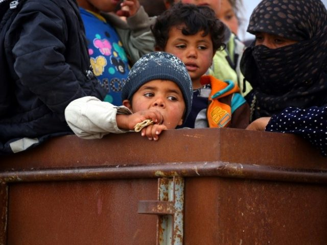 The EU estimates that about 13.5 million Syrians need humanitarian assistance inside the country