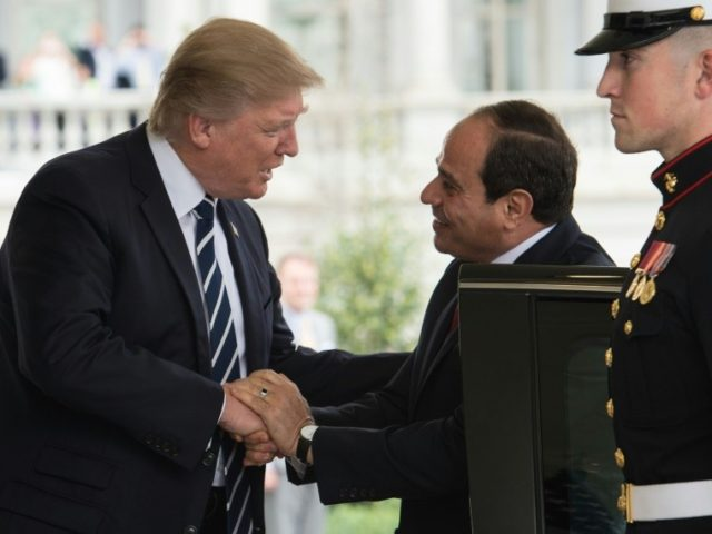 US President Donald Trump (L) greets his Egyptian counterpart Abdel Fattah al-Sisi at the White House