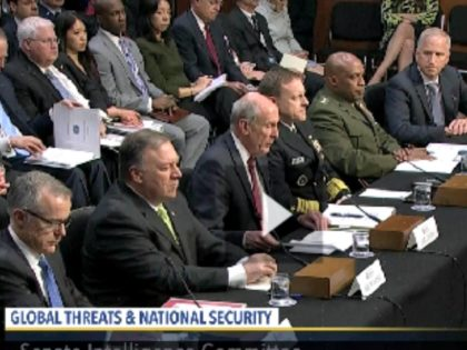 Global Threat Meeting CSPAN