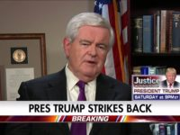 Newt Gingrich: Gap Between How World Leaders, American Media Treat Trump 'Inexcusably Big'