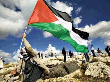 Palestinian with Flag AP