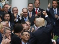 Trump Rose Garden Obamacare fist pump (Mark Wilson / Getty)