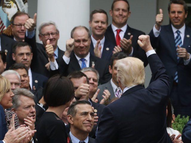 Trump Rose Garden Obamacare fist pump (Mark Wilson / Getty)