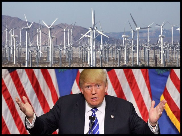 trump wind turbines