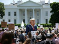 WASHINGTON, DC - MAY 10: A demonstrator wears a large effigy of President Donald Trump during a protest rally against President Donald Trump's firing of Federal Bureau of Investigation Director James Comey outside the White House May 10, 2017 in Washington, DC. Angry over the firing of Comey, about 300 …