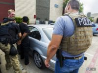 ICE Enforcement Removal Operations Officers