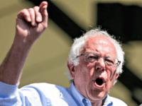Bernie Shouting REUTERSMax Whittaker