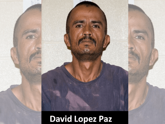 David Lopez Paz