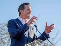 Gavin Newsom (Kyle Grillot / AFP / Getty)