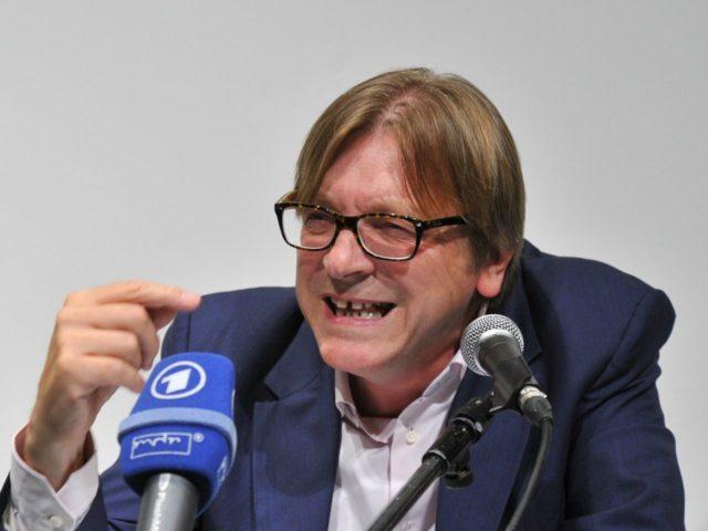 Guy Verhostadt