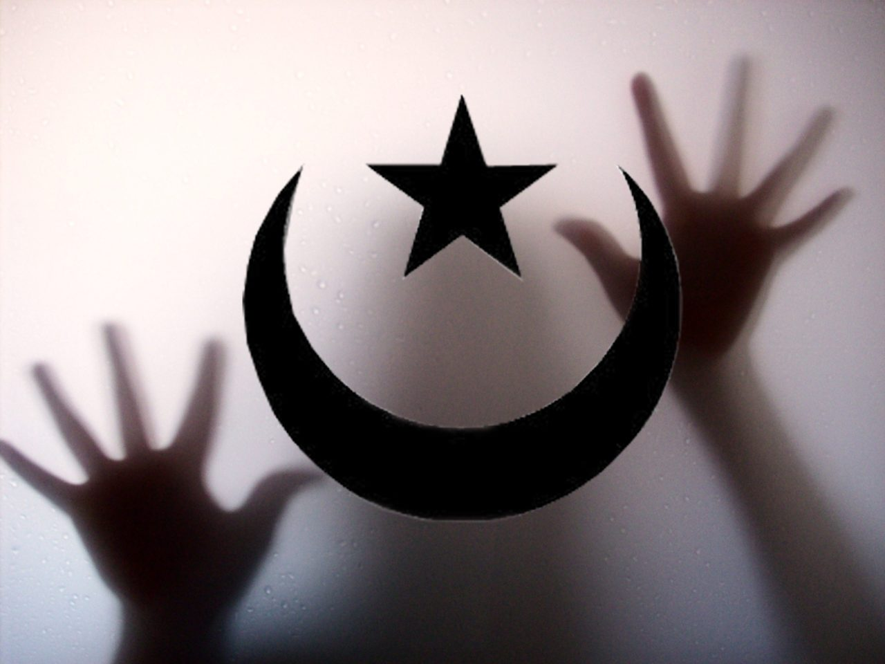 The New 'Uncle Toms': Islamists and Leftists Target ...
