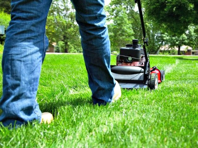 Mowing the Lawn Getty