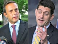 Nehlen and Ryan AP:NBC