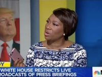 Joy Reid: Maybe Americans Will Get Used to Living in an 'Authoritarian State'
