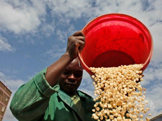 agriculture kenya africa