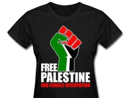 free palestine shirtl