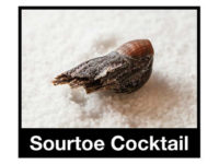 Severed Human Toe Served in Canadian Bar's 'Sourtoe Cocktail' Is Stolen