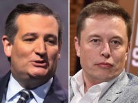 Ted Cruz and Elon Musk.