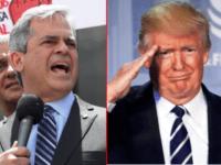 Alder - Trump