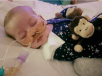 Baby Charlie Gard Dead: 'Our Beautiful Little Boy Has Gone'