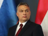BUDAPEST, HUNGARY - FEBRUARY 17: Hungarian Prime Minister Viktor Orban speaks to the media with Russian President Vladimir Putin at Parliament on February 17, 2015 in Budapest, Hungary. Putin is in Budapest on a one-day visit, his first visit to an EU-member country since he attended ceremonies marking the 70th …