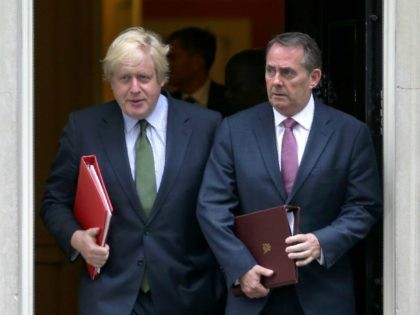 Britain's Foreign Secretary Boris Johnson (L) and Britain's International Trade Secretary Liam Fox leave after a Cabinet meeting at 10 Downing Street in central London on June 27, 2017. / AFP PHOTO / Daniel LEAL-OLIVAS (Photo credit should read DANIEL LEAL-OLIVAS/AFP/Getty Images)