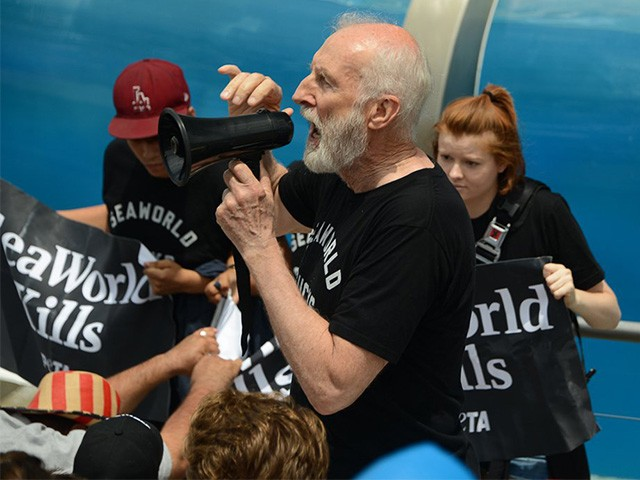James Cromwell Cited for Trespassing During PETA SeaWorld Protest
