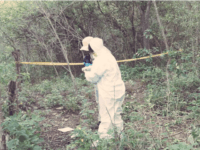 Mexican Cartel Extermination Field Found near UNESCO Site