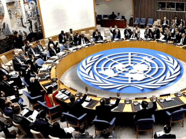 UN Security Council in a past session. Photo: UN/Getty Images/File
