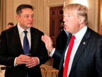 elon-musk-will-meet-with-trump-to-talk-infrastructure-spending AP Evan Vucci
