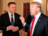 elon-musk-will-meet-with-trump-to-talk-infrastructure-spending AP Evan Vucci