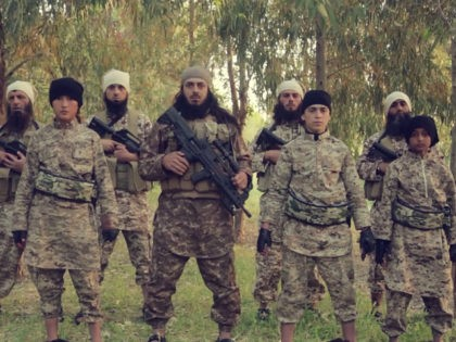 Islamic State Cubs