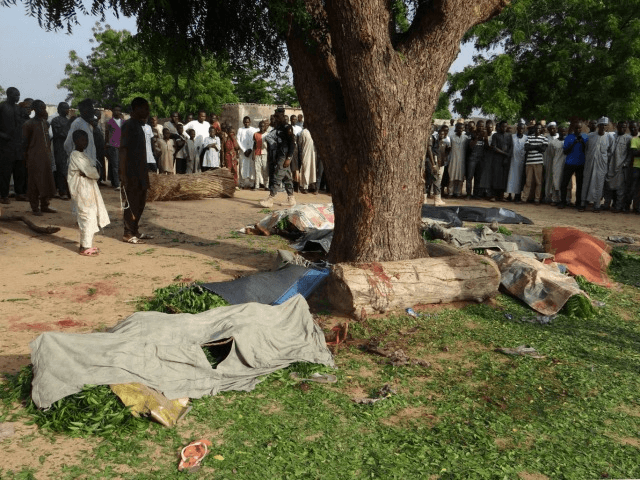Boko Haram strikes again on Cameroun-Nigeria border,16 dead