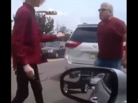 Road Rage: Driver Grabs Dog from Vehicle Next to His, Throws Dog in the Street