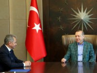 Turkey's President Recep Tayyip Erdogan, right, meets with Russia's Defence Minister Sergei Shoigu, left, in Istanbul, Sunday, July 2, 2017. (Presidency Press Service, Pool Photo via AP)