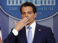 Anthony Scaramucci-Linked Twitter Account Posts, Then Deletes Holocaust Poll