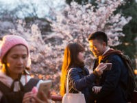TOKYO, JAPAN - APRIL 02: A couple from Vietnam, right, takes a selfie photograph in front of a cherry tree in blossom on April 2, 2017 in Tokyo, Japan. Japan's cherry blossom season is reaching its climax this week. The season officially kicked off on March 21, 2017, when the Japanese Meteorological Agency confirmed the flowers on a sample tree in the Yasukuni Shrine were in bloom in Tokyo. (Photo by Tomohiro Ohsumi/Getty Images)