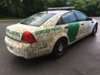 Border Patrol Agent's Car Sprayed with Manure for Not Arresting Enough Illegal Aliens