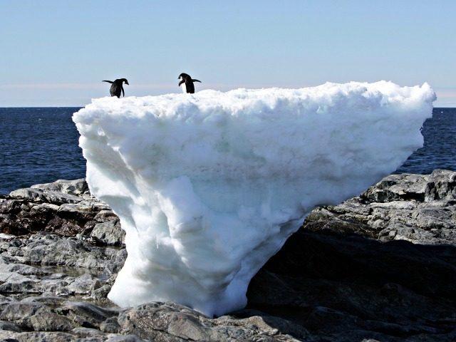Global Warming REUTERSPauline Askin