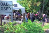 Haitians Crossing US Canada Border AP, Alexa Ard:McClatchy