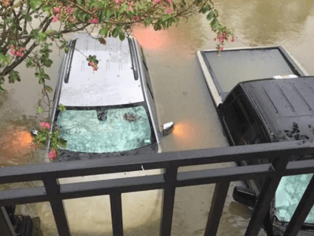 Houston Flooding - Beavers - 8-27