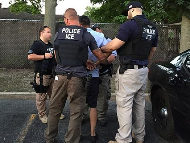ICE Sex Offender Operation 1