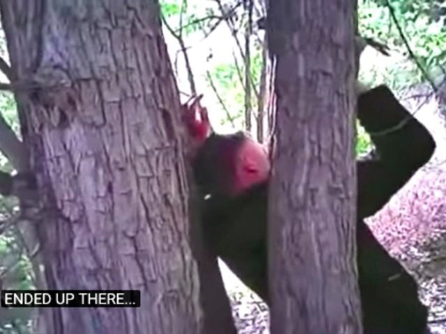 Man Nailed to Tree KRQE