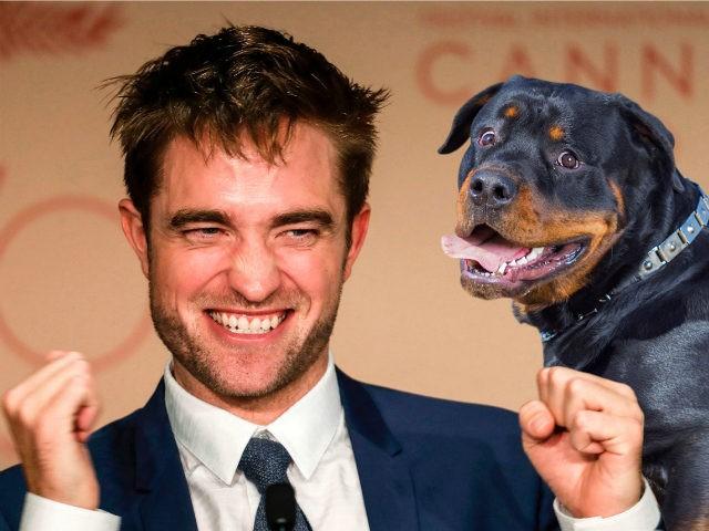 Robert Pattinson Composite; Getty Images