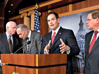 Rubio and Gang of Eight