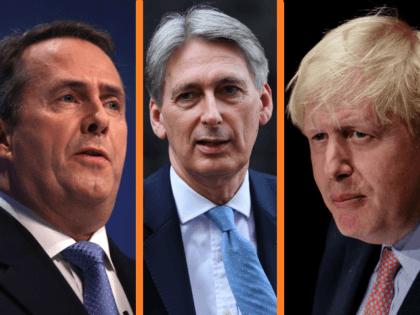 (L-R) Secretary of State for Defence Liam Fox, British Chancellor of the Exchequer Philip Hammond, British foreign secretary Boris Johnson
