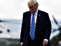 Trump Walking to AF1 AFP PhotoSaul Loeb