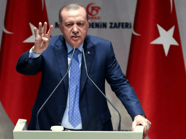 With tens of thousands of arrests and sackings since the failed coup 12 months ago, Turkish President Recep Tayyip Erdogan has cemented his grip on power buoyed by an April referendum success